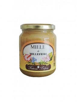 Miele millefiori 500g