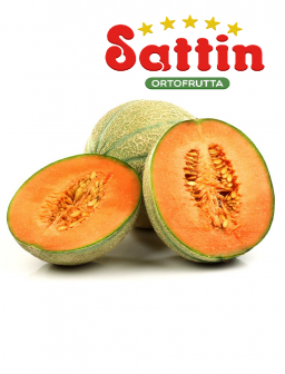 Meloni Retati Sattin