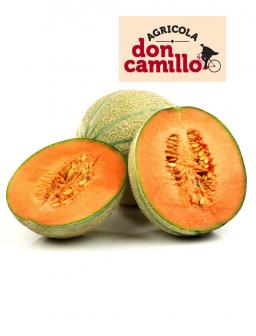 Meloni Retati Don Camillo