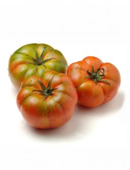 Pomodori Marinda